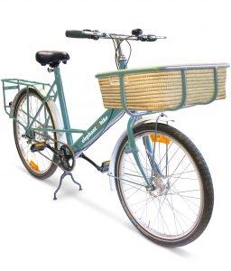 Christmas Present Idea 7 - Elephant Bike
