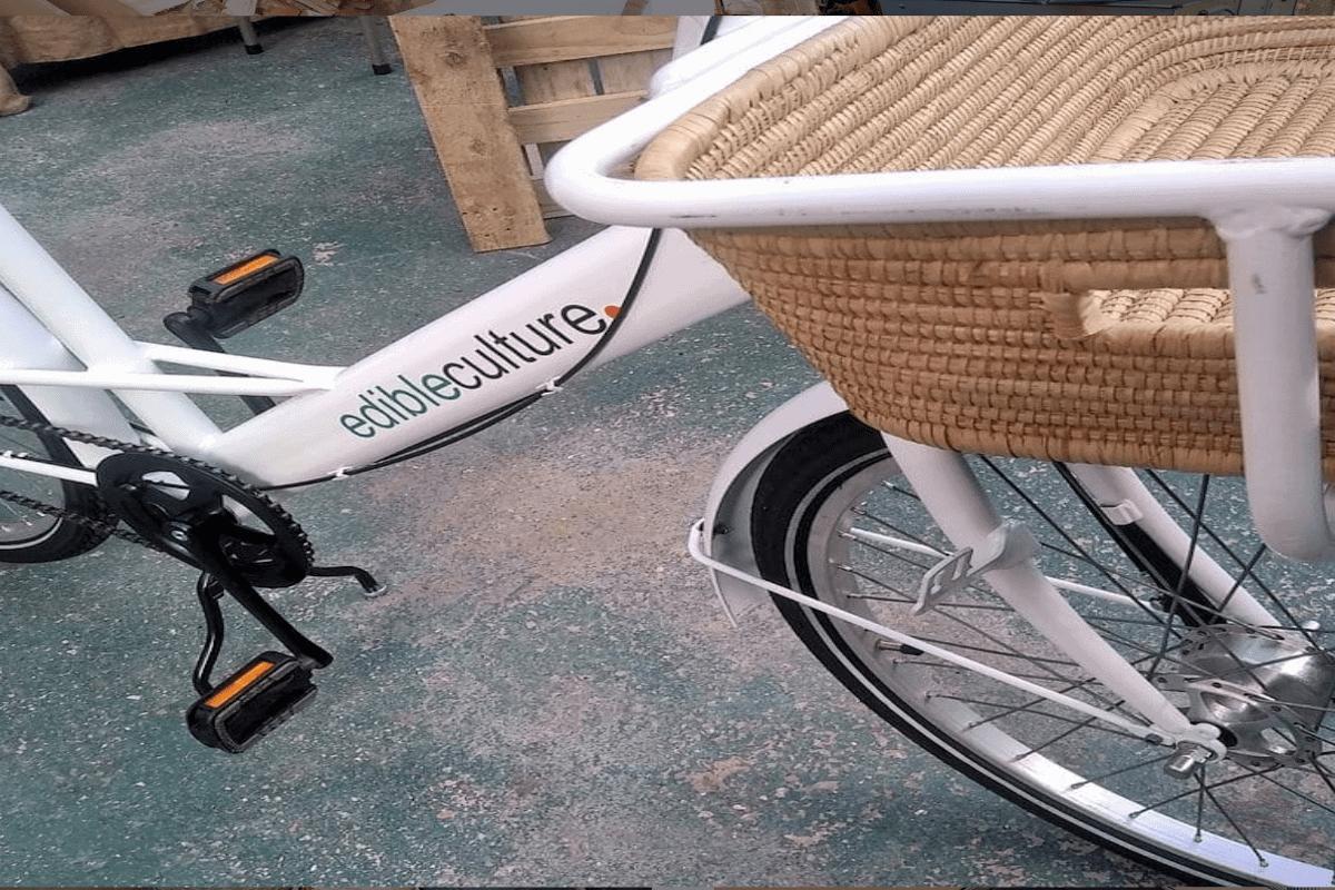 edible culture customised elephant bike